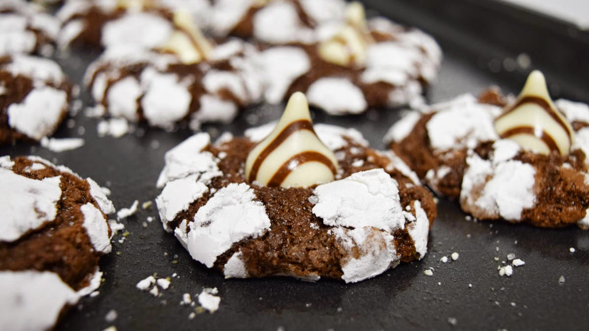Salted Crinkle Cookies